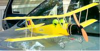 Name: tigermoth 01.jpg