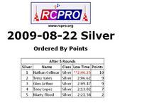 Name: Silver points 8-22-09.JPG Views: 60 Size: 47.5 KB Description: