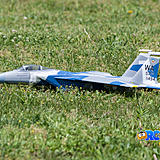 Landing on grass is not a difficult task