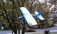 Name: IMAG0312-sm.jpg