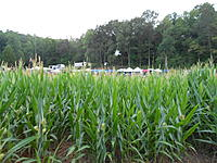 Name: DSCN2030.jpg