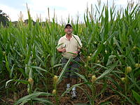 Name: DSCN2031.jpg