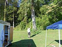 Name: DSCN2087.jpg Views: 48 Size: 322.3 KB Description: trees love model aircraft