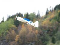 Name: YAK543.jpg