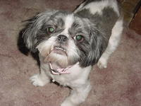 Name: DSC01452.jpg