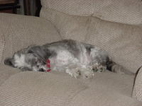 Name: DSC00909.jpg