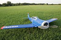 Notice how low this plane sits in the grass.