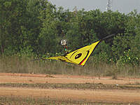 Name: RC-Kite.jpg