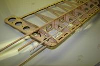 Name: DSC00729.jpg