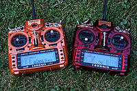 Name: taranis red and copper 01.jpg