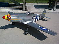 Name: Photo255.jpg