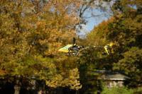 Name: DSC_2657.jpg Views: 209 Size: 89.1 KB Description: TREX XL against the fall foliage of Central Park