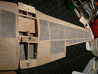 Name: P1030446.jpg