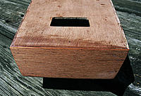 Name: T37_8.jpg
