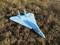 Name: DSCF2205.jpg Views: 1289 Size: 226.5 KB Description: F-14 Profile Prototype.