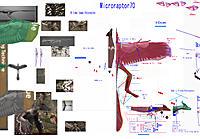 Name: 180308 Microraptor70 .jpg Views: 23 Size: 1.19 MB Description: