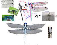 Name: 191019 Dragonfly 48-3.jpg Views: 4 Size: 1.59 MB Description: