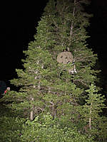 Name: super77th-2010-creature.jpg