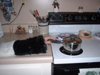 Name: hh cooking.jpg Views: 388 Size: 75.0 KB Description:
