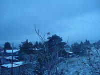 Name: snow and other 021.jpg