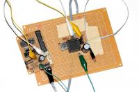Name: brain01.jpg