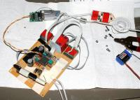 Name: coptershyna04.jpg