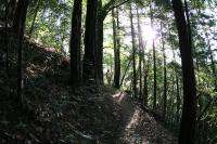 Name: rh2_33.jpg