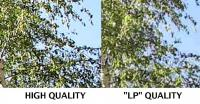 Name: hd05.jpg