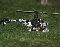 Name: carbon_flybarless03.jpg