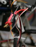 Name: bec09.jpg