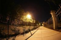Name: night08s.jpg