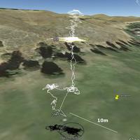 Name: sonar79.jpg Views: 127 Size: 98.1 KB Description: High altitude flight on The Goog