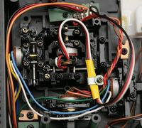 Name: dobson29.jpg