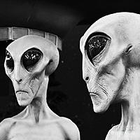 Name: two-grey-aliens-science-fiction-square-format-black-and-white-shawn-obrien.jpg