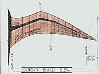 Name: Curvy Bird-2.jpg Views: 92 Size: 263.0 KB Description: