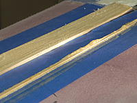Name: DSCN3901.jpg