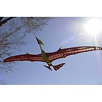 Name: Pterodactylus-200m-Fraesteilesatz_b4.jpg Views: 48 Size: 75.2 KB Description: that is one skinny neck !