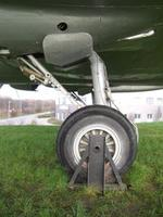 Name: CIMG1666.jpg