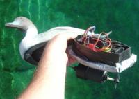 Name: db1S.jpg