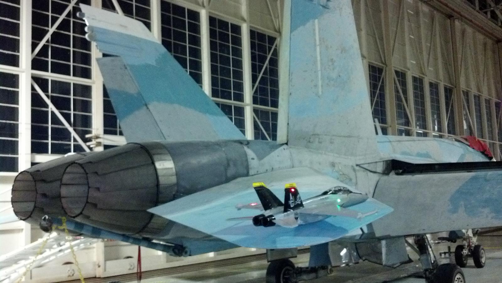 Name: Mini me.jpg Views: 209 Size: 186.9 KB Description: My F/A-18F on the horizontal stab of a legacy F/A-18C .