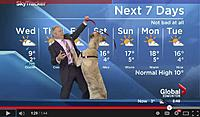 Name: dog with weatherman.jpg