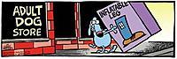Name: dogstore.jpg Views: 80 Size: 21.4 KB Description: GENE's dog.