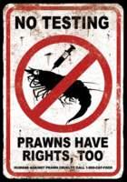 Name: prawn.jpg Views: 95 Size: 26.7 KB Description: OH YEA??
