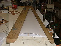 Name: DSCF9909.jpg