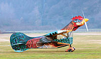 Name: Flying Rooster Airplane.jpg Views: 73 Size: 96.0 KB Description: