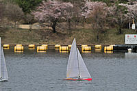 Name: IMG_1587-001.jpg