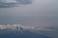 Name: IMG_1987-001.jpg