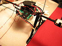Name: IMG_6504.jpg