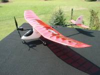 Name: Elfi #3, 08-16-05, #5.jpg