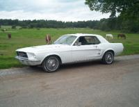 Name: Kopia av Min Mustang 67 002.jpg